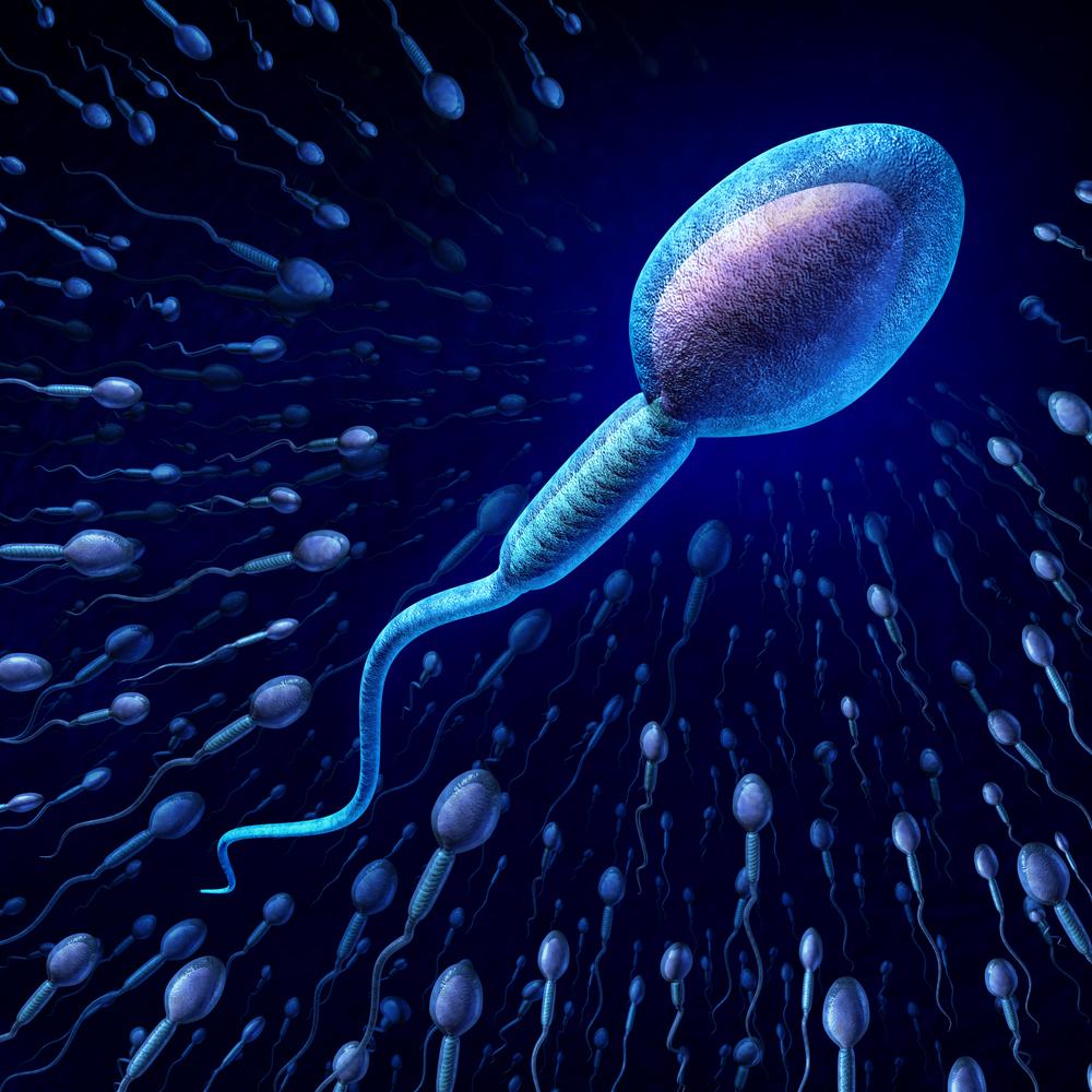 sperma-cheloveka-video
